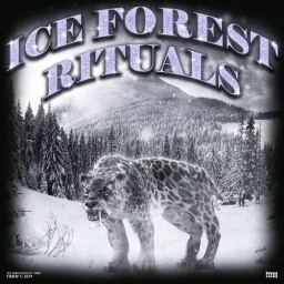 2K19 REVIEWED: TRRM – ICE FOREST RITUALS